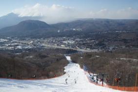 2019日本新��县滑雪长地址+开放时间+门票价格