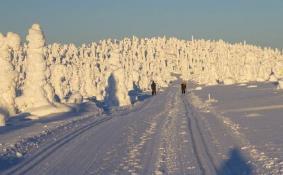 中国驾照可以在芬兰租车 芬兰自驾游注意事项