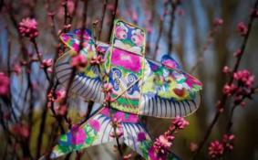 2018上海雅园风筝节有什么活动(时间+地点)