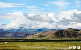 在西藏头疼了怎么办