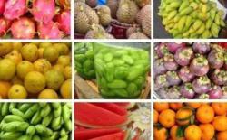 海南岛有哪些水果 海南岛主要生产什么水果 三亚特产水果有哪些